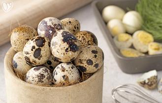Quail Eggs - Pack of 12